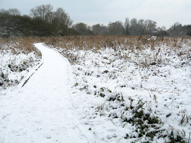 snowfall over the boardwalk at winnall moors