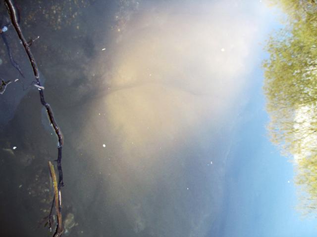 river hatch: winnall moors soundwalk