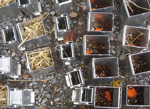 autumn traps: sebastiane hegarty