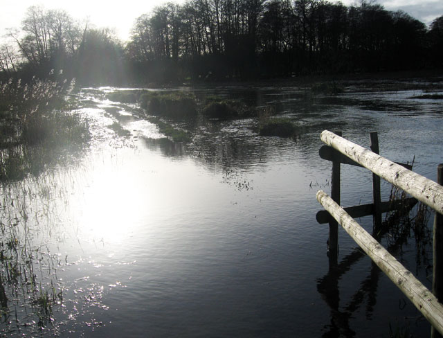 Winnall moors: flooded path